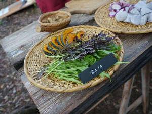 和ハーブガーデン ホテルそらにわ<旧:プチホテル シエスタ>:当館の畑で取れたお野菜の数々…