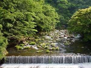 福住楼:早川の流れ