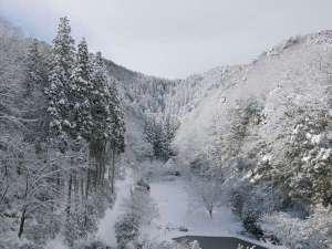五万坪の森林庭園 冬は雪が積もると一面が銀世界。幻想的な風景をご覧いただけます