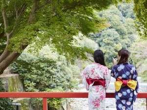 敷地内を流れる川にかかる橋は、絶景の写真スポットです。