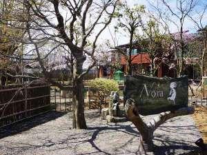 アグリツーリズモ ノラ:中庭