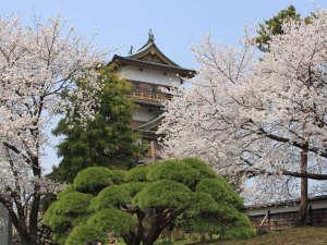 *【周辺】高島城周辺は桜の名所ともなっており、毎年多くの人で賑わいます。