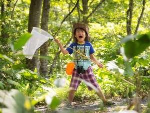 星野リゾート トマム ザ・タワー:【グリーンシーズン】森の探検隊 体験イメージ