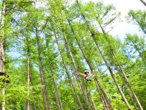 きたゆざわ 森のソラニワ(旧 湯元第二名水亭):大自然の中で空を飛ぶ!アドベンチャーパーク「ムササビ」のロングジップライン
