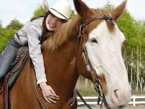 パディーフィールド:馬とのふれあいも、ご家族に大人気。