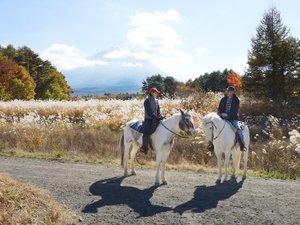 パディーフィールド:秋には富士山+すすきや紅葉も馬の上から楽しめます