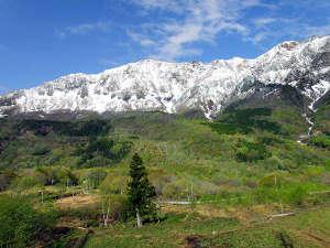 切明リバーサイドハウス:新緑になり始めの残雪に覆われた二百名山鳥甲山