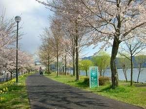 春の諏訪湖畔 春を感じながらの散策は格別です。