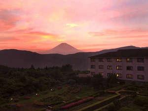 富士山を一望できる宿 ホテルグリーンプラザ箱根:露天風呂からだけでなく、富士山は大自然に囲まれた庭園からも一望できます。