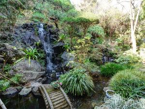 伊豆 伊東温泉 陽気館:*【庭/湯滝】かけ流しの露天風呂からあふれた温泉は、滝となって庭へ流れ落ちます。
