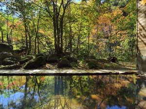 層雲峡温泉 朝陽リゾートホテル:【大自然の湯「川の囁き」】温泉に映る秋の美しい風景に癒されます