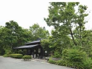 麻生釣温泉 亀山の湯・宿の写真