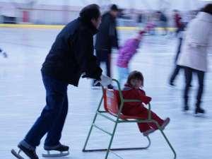 みちのく城址温泉・ホテルみどりの郷:アイススケート♪楽しそうです~