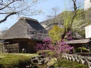 自然休養村センター 綾川荘:かやぶき離れの食事処です。左側が玄丹屋敷、右奥が式部屋敷です。