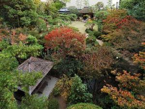 道後温泉 ふなや~創業三百九十余年~:自然が残るふなやの庭園には川が流れ四季折々の風情をお楽しみいただけます。【12月頃】
