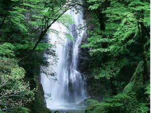 波賀不動滝公園 楓香荘:滝百選の一つ、原不動滝。波賀は他にも自然がいっぱい!