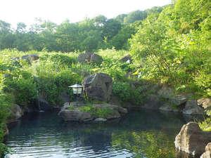 新見温泉 秘湯の宿 新見本館:*【露天風呂】季節や時間で移ろう自然美を眺めながら、至福のひとときを…♪