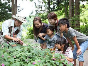 トヨタ白川郷自然学校:【自然体験】専属のインタープリターがご案内します♪