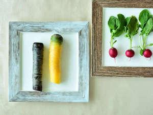地元伊豆産の野菜イメージ