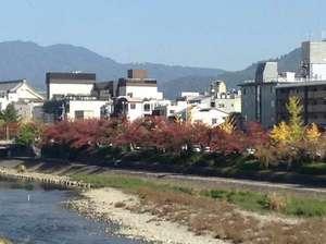とみ家:鴨川の紅葉