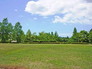オタイコヒルズ:<芝生広場>広々とした敷地で思いっきり遊んじゃいましょう♪