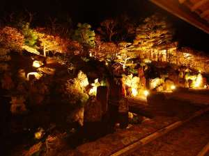 宿坊 不動院:5分毎にライトの色が変わる中庭