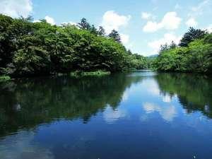 ホテル東雲サロン:雲場池