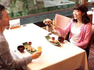 高山わんわんパラダイスホテル:レストランもわんちゃんと一緒