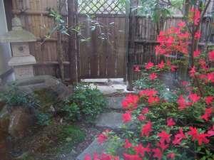 露天風呂へ通じる風情ある中庭にも5月には真っ赤なつつじが・・・