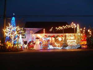 12'11.3今年もサライのクリスマスが始まります。館内がクリスマス美術館になります★