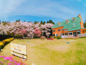 北海道の輝き ティンクナの写真