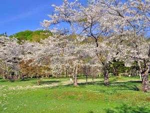 パシフィック温泉ホテル清龍園:【庭園】