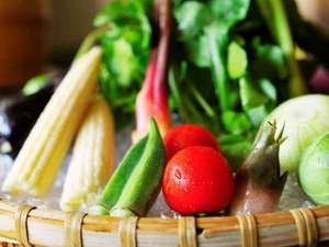 地元野菜のバーニャカウダ