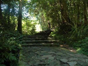 クアハウス熊野本宮 渡瀬緑の広場バンガロー:熊野古道の大自然を感じながらウォーキング。