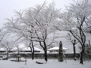 飯坂温泉 あづま荘:*冬の和風庭園は、美しい雪景色に変化します。