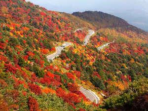 飯坂温泉 あづま荘:*【秋の吾妻スカイライン】各スポットで色づく時期違うので、シーズンを通して紅葉を楽しめます♪