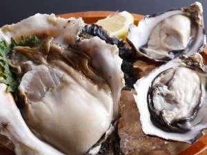 名代的矢かき料理の宿 いかだ荘山上:岩牡蠣とプレミアムオイスターの食べ比べセット
