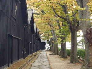 酒田グリーンホテル:山居倉庫裏、紅葉の欅並木