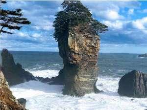 渚亭たろう庵:当館から徒歩約15分の海岸景勝地!国立公園内に位置し、県指定天然記念物の三王岩。