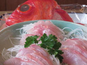 城ケ崎川上ペンション:伊東地金目鯛刺身は超人気メニュー、頭は煮つけて。