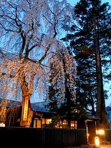 桜咲く季節・外観入口