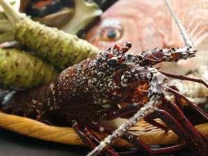 りばてぃ・リゾ・音AMAGISO[旧:天城荘]:*厳選食材(伊勢海老)料理人の繊細な味と技を五感で味わっていただけます