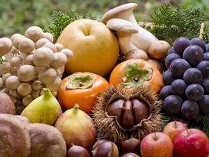 水素風呂と美食と・・・。谷川温泉やど莞山KANZAN:秋の味覚