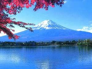 富士の国やまなしの調度おへそに位置する石和温泉は、山梨観光の基地にぴったり