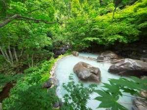 【露天風呂 八重九重の湯】自然に囲まれた温泉は秘湯のような気分を味わえます