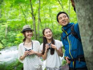 【奥入瀬ガイドウォーク】自然ガイドと一緒に奥入瀬渓流の人気コースを歩く散策プログラム