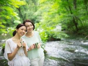 【渓流モーニングカフェ】早朝の奥入瀬渓流で森が目覚める瞬間を感じるひとときをお過ごし下さい