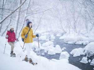 星野リゾート 奥入瀬渓流ホテル:【冬】奥入瀬渓流の雪景色を楽しむ渓流散策ツアー