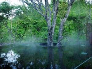 早朝の渓流露天風呂