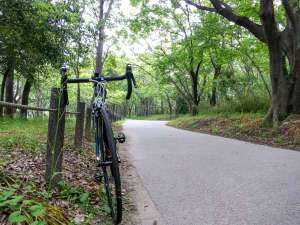 大自然の中でサイクリングを